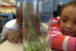 Boys & Girls Clubs of Harford County named STEM  'Center of Innovation' for youth