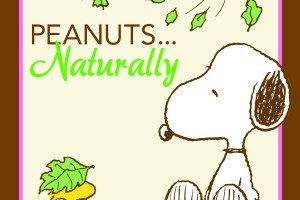 "Harford County Library to feature ""Peanuts . . . Naturally"" exhibition  January 29 to April 24"